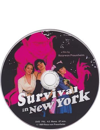 survival in ny shop